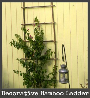 bamboo ladder title