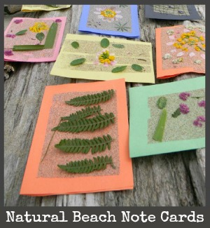 beach nature cards title