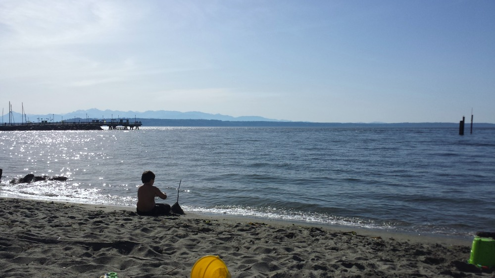 edmonds beach sandcastle